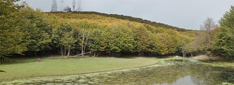Lago di Monte Soro, a small pond at 1795 m a.s.l. in the oro-mediterranean vegetation belt of Sicily.